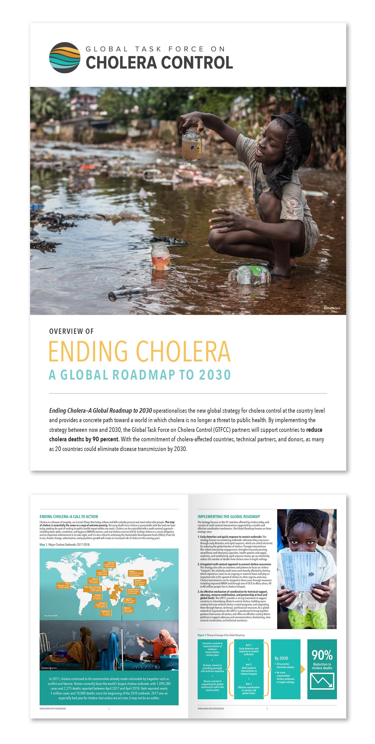 Cholera Roadmap.jpg